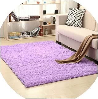 Carpet for Living Room European Home Warm Plush Floor Mats Area Rug Living Room Alfombras,Voilet,80cm x 160cm