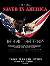 Saved In America