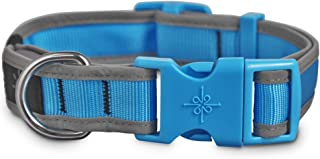 Good2Go LED Light-Up Collar for Dogs in Blue