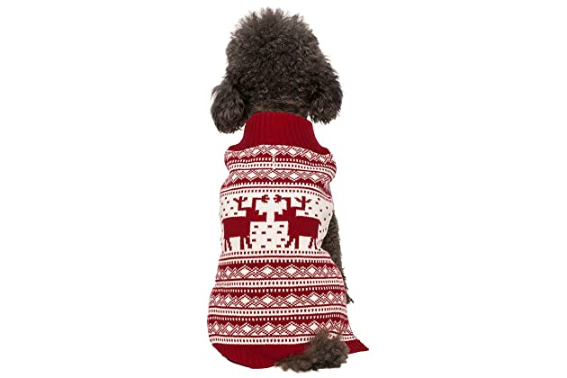 Best Sweaters For Chihuahuas Amazoncom