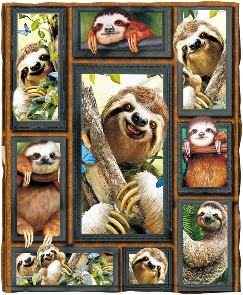 ChriHome Flannel Blanket 3D Soft Sloth Lightweight Cozy Houston Mall Max 85% OFF