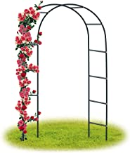 Amazon.es: arco jardin