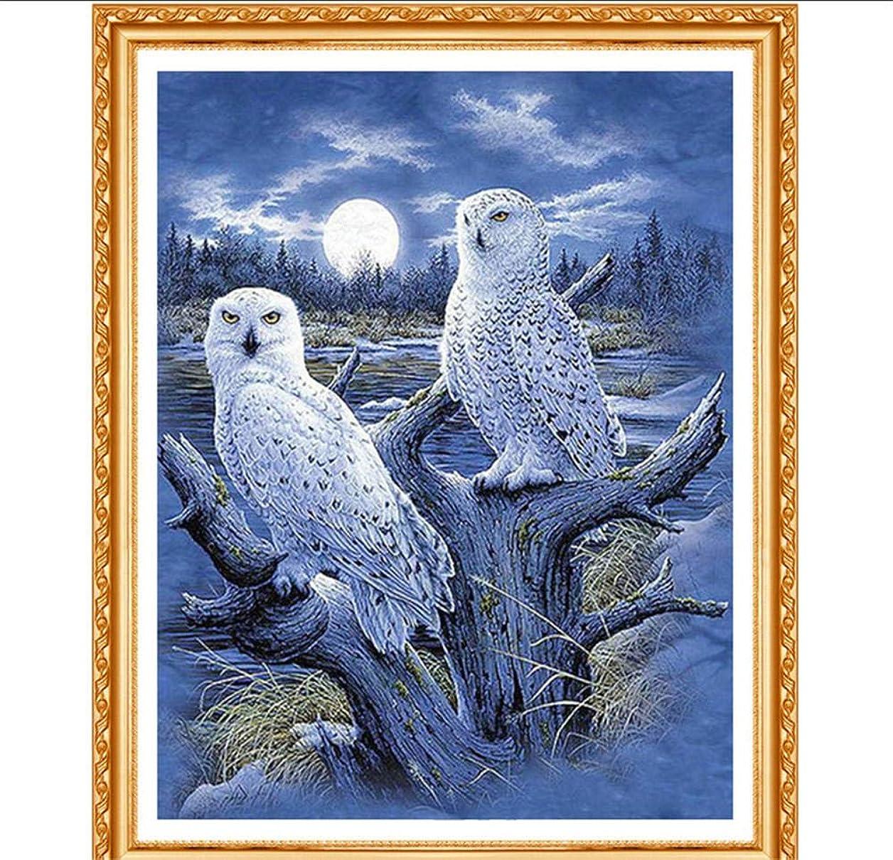 モザイク蛾によってダイヤモンドは完全スクエアダイヤモンド「白フクロウ」3D刺繍クロスステッチラインストーン5D DIY装飾30x40cm絵画