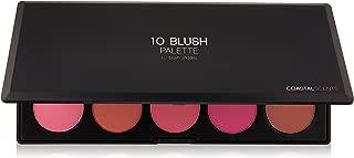 Best professional blush 10 color blush palette Reviews