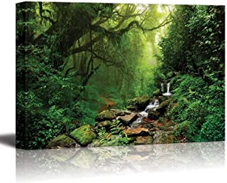 wall26 Canvas Prints Wall Art - Forest of Nepal | Modern Wall Decor/Home Decoration Stretched Gallery Canvas Wrap Giclee Print. Ready to Hang - 24