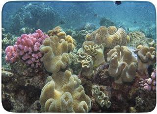 Alfombra de baño Mar Coral Agincourt Reef Barrier Queensland South Pacific Baño Submarino Decoración Alfombra