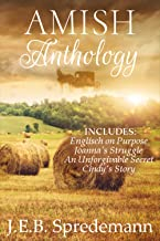 Best amish books on kindle Reviews
