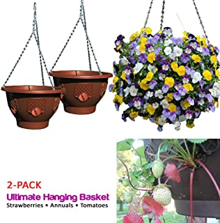 easy fill hanging baskets usa