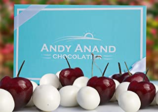 Andy Anand Premium California Greek Yogurt Cherries in Gift Basket, All-Natural Gourmet Christmas Holiday Corporate Food Gifts with Greeting Card, Valentines,Anniversary Birthday Get Well Baskets 1lbs
