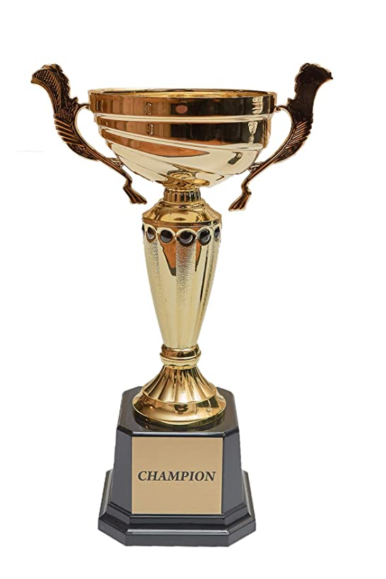 Fantasy Bros Completed Metal Cup Trophy   Best Champion Trophy Cup with Plastic Base for Sports, Awards, Prizes, Souvenirs & Gifts   Various Sizes for First, Second, and Third