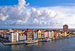 Best curacao art print Reviews