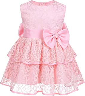 (アゴキー) Agoky ベビー 女の子 ノースリーブ ちょう結び レース 刺繍入り ガールドレス プリンセス ページェント 結婚式 花嫁介添人 誕生日 パーティー チュチュドレス