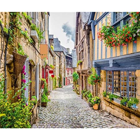 7x10 FT European Vinyl Photography Background Backdrops,Heidelberg Old City Streets Picturesque Town with Medieval Architect Panorama Background for Photo Backdrop Studio Props Photo Backdrop Wall