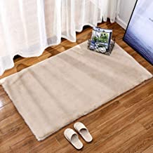 Rectangular Carpet Living Room Study Imitation Rabbit Fur Thickened Warm Non-Slip Rugs Balcony Bay Window Mat,5,50 * 80cm