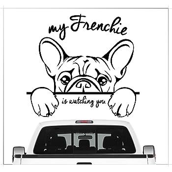 Hr Werbedesign 2x Aufkleber Spiegel Französische Bulldogge Nummernschild Kennzeichen Dog Frenc Auto