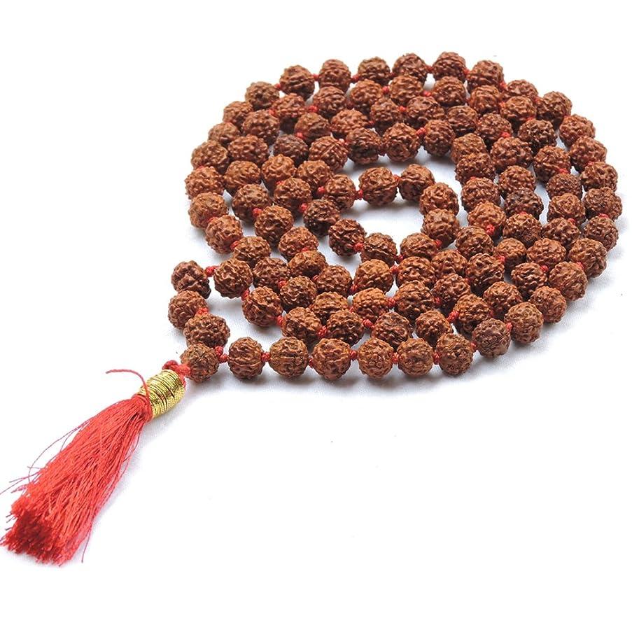 HealthGoodsIn - Meditation (Japa) Rudraksha Mala with 108 + 1 Beads (8-9 mm Sized Beads) - Pack of 1 Mala