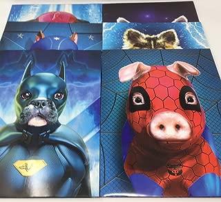 Super Hero Pets Portfolio Set of 6. School Folders