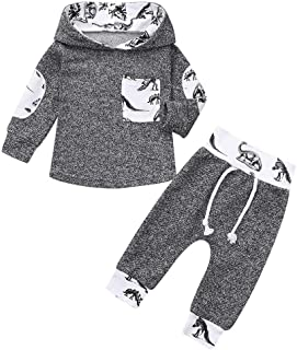 Toddler Infant Baby Boys Dinosaur Long Sleeve Hoodie Tops Sweatsuit Pants Outfit Set (Gray, 3-6 Months)