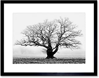 Best black and white framed pictures Reviews