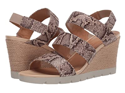 The FLEXX Free Spirit (Teak Jack) Women
