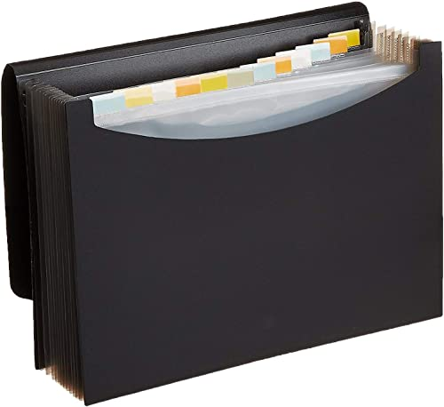 Amazon Basics Expanding Organizer File Folder, Letter Size - Black