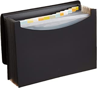Accordion File Organizer