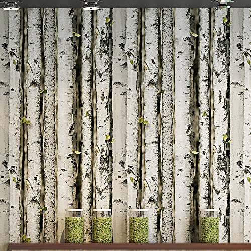 Akea Birch Tree Forest Wallpaper Roll, Forest Trunk with Green Shoots Wall Art murals, for Living Room, Bedroom, TV Background, Accent Wall