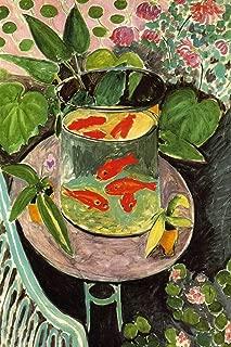 Robin Hood Merchandise Henri Matisse Goldfish Cool Wall Decor Art Print Poster 12x18