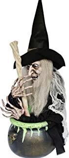 Halloween Animated Witch in a Cauldron, 22 Inch Black