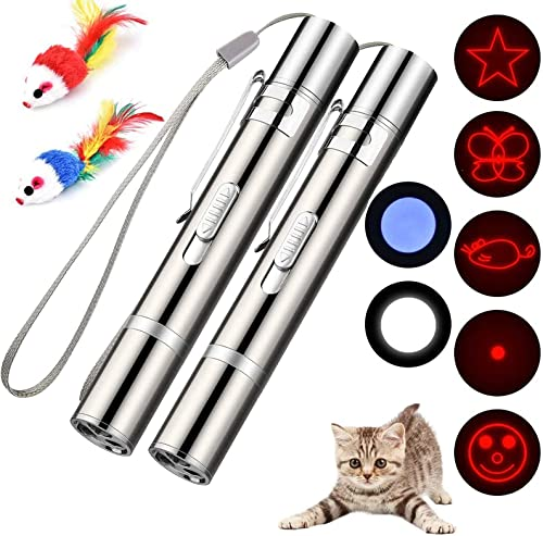 Cat Toys for Indoor Pets,Laser Pointer for Cats Dogs,Interactive Pet Toy, Rechargeable,Make Your Pet Play with You (2...