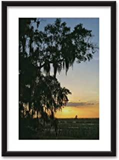 Actorstion Sunset Spanish Moss Covered Trees Silhouette Bedroom Black and White Structure Canvas Prints,Savannah Wildlife Refuge for Living Room,16''x20''