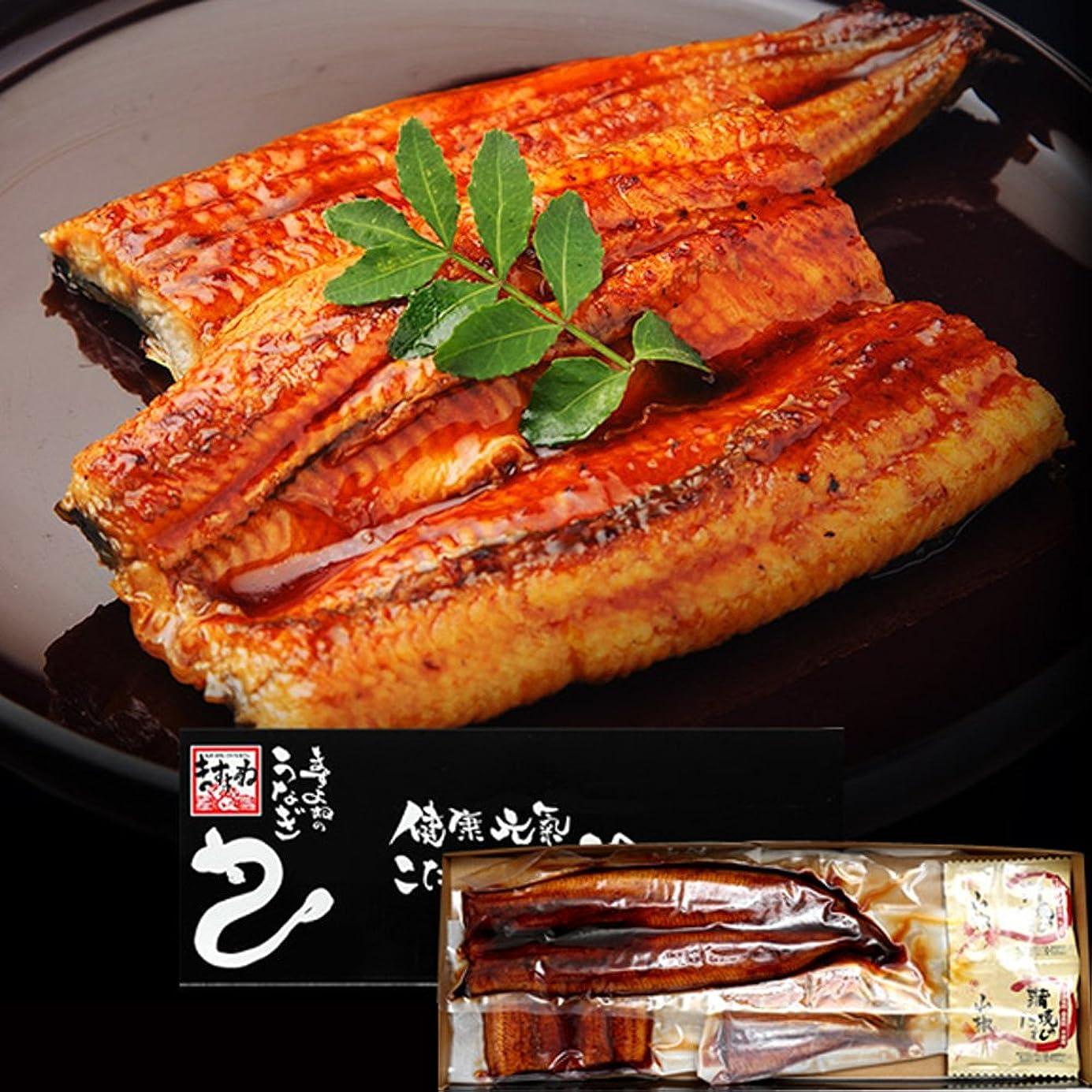 ますよね 特大 うなぎ蒲焼き (鰻蒲焼き1本 カット鰻2枚セット)[中国産] (3人前セット)