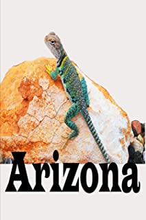 My Adventures to Arizona Travel Journal: Lizard Gecko Desert Theme 6X9 Composition Notebook with 120 Blank Lined Pages