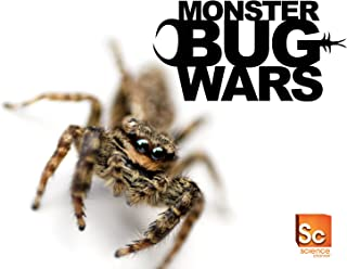 Monster Bug Season 1
