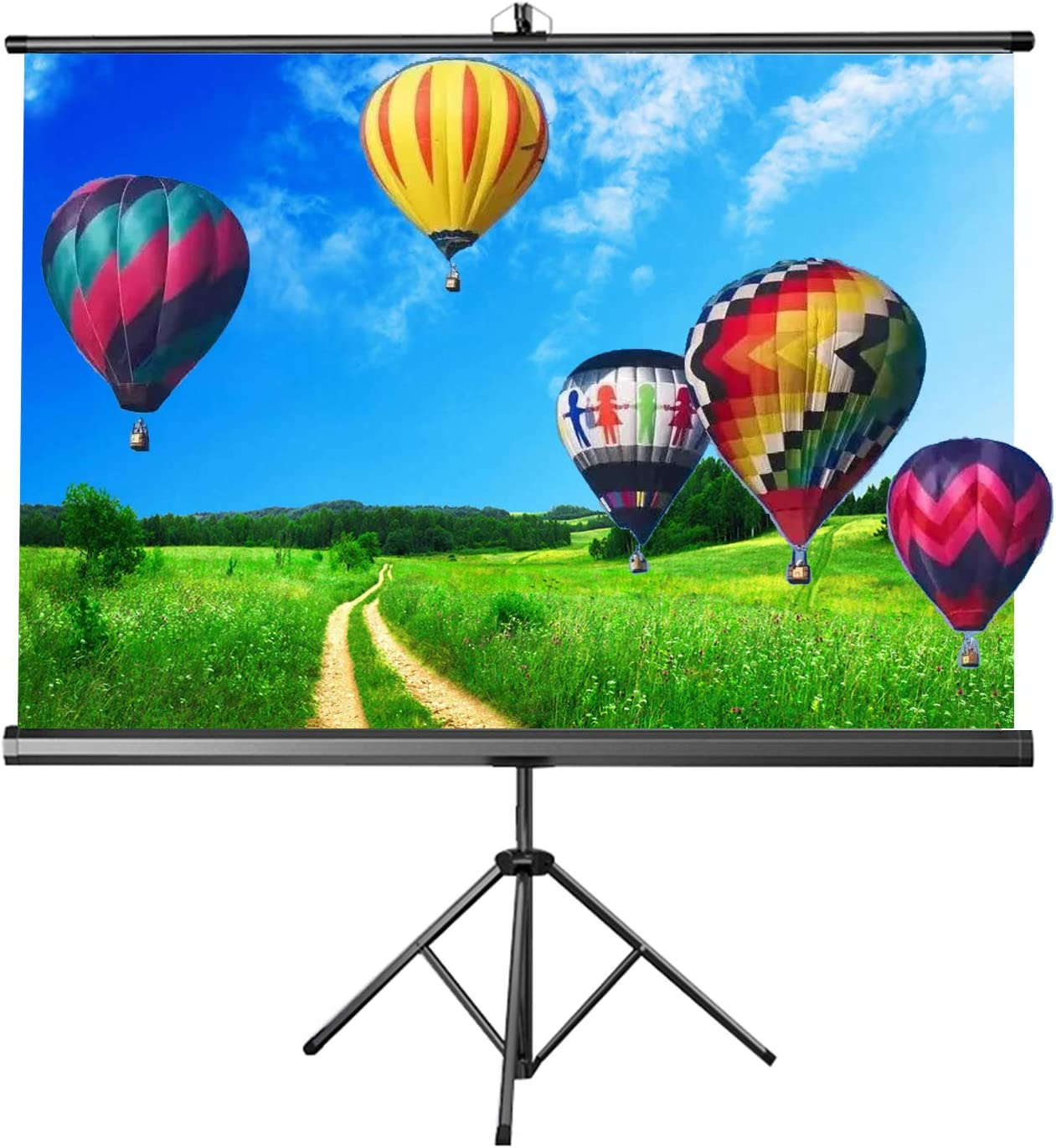 ALDS Tripod Stand Projection Screen, 160°Viewing Cone Projector Screen Freestanding Movies Screen for Small Rooms Travel Meeting (4:3/16:10/16:9 60 Inch)