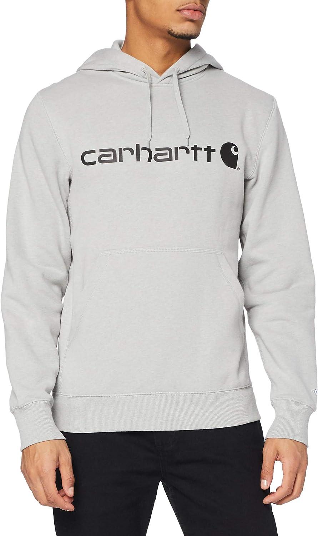 Carhartt Men's Force Delmont Signature Graphic Hooded Sweatshirt