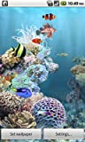 aniPet Marine Aquarium Live Wallpaper (Free)