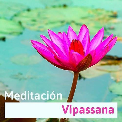 Meditación Vipassana - Ambiente de Yoga y Relajación ...