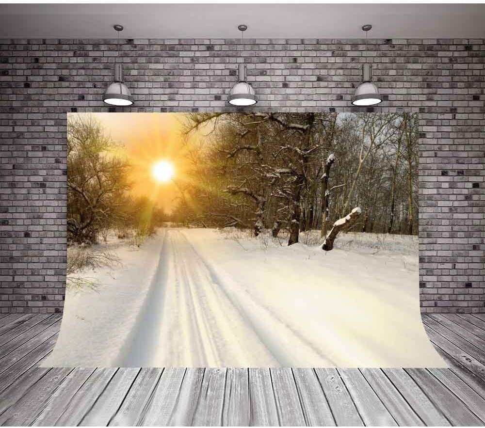 MTMETY 10x7ft Christmas Backdrops for Photography Christmas Tree Blue Sky Background Snow Winter Photo Backdrops for Party Customized Photo Background Studio Props Vinyl Photo Studio Props LFME541