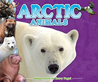 Arctic Animals Fun Facts for Kids