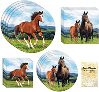 Pony Horse Party Supplies, 16 Guests, 64 Pieces, Disposable Paper Dinnerware Plates and Napkins, Birthday, Boy, Girl, Gender Neutral