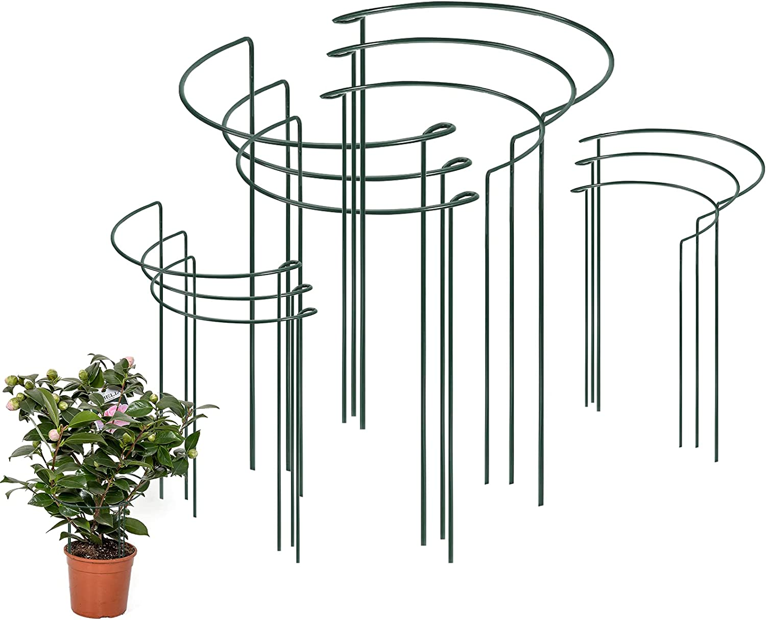 Keelion 12 Pack Plant Support Metal Spring new work Fixed price for sale one after another Garden Green Stakes