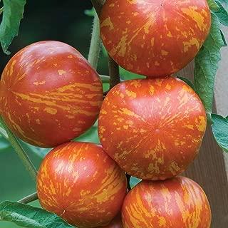 Burpee 'Red Zebra' | Red Saladette Slicing Tomato | 30 Seeds