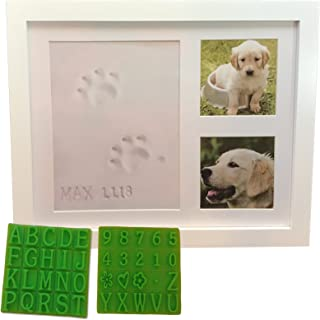 dog nose print kit