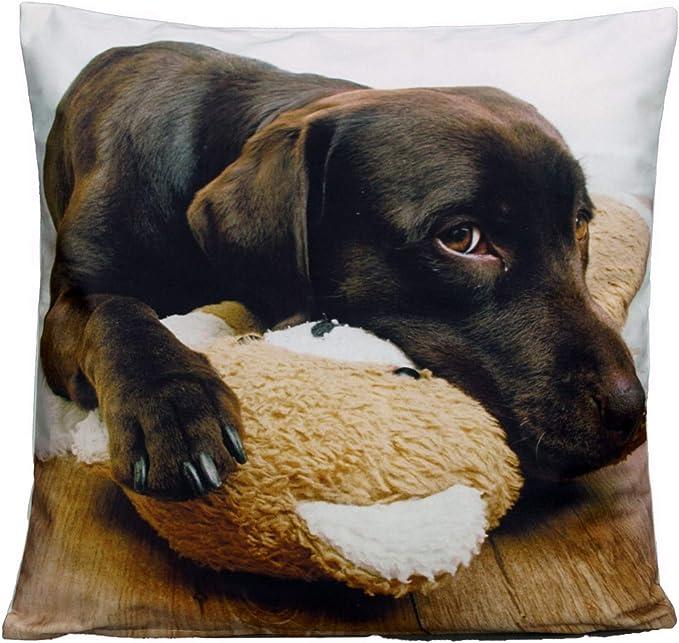 Kissenhülle Hunde Dogs Life natur weiß rot verschiedene Größen SCHÖNER LEBEN