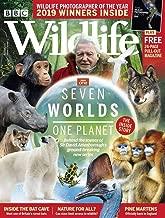 wyoming wildlife magazine