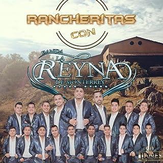 Arboles de la Barranca (En Vivo)