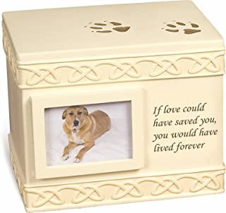 Best containers for pets ashes Reviews