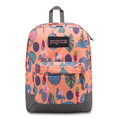 JanSport Black Label Superbreak Backpack - Classic b1a1b7bf95e08