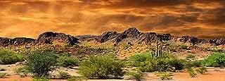 Reptile Habitat, Terrarium Background, Orange Desert Sky with Cactus - (Various Sizes)